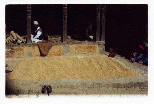 Grainshoes